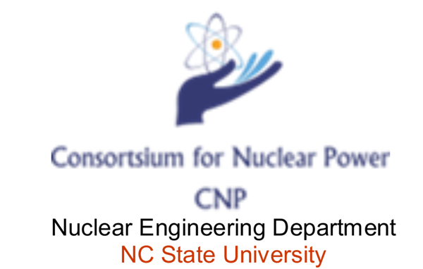 Consortium for Nuclear Power